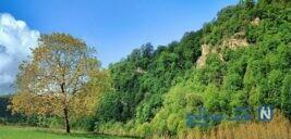 جاذبه های توریستی نکا در مازندران