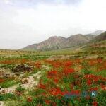 جاهای دیدنی زیرکوه در خراسان جنوبی