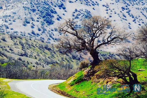 مناطق دیدنی جوانرود در کرمانشاه