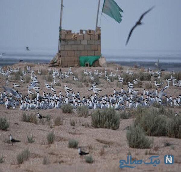 یکی از بندرهای استان خوزستان