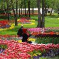 پارک هایی که در سفر به مشهد باید بازدید کرد