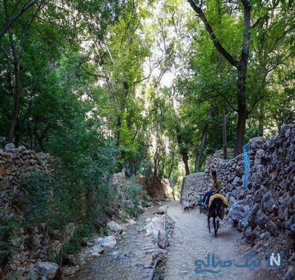 آبشار و مناظر طبیعی و زیبای روستای اخلمد