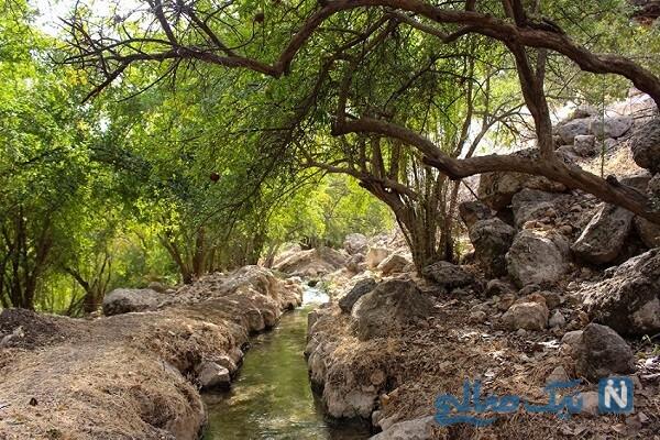 جاهای دیدنی اندیمشک در خوزستان