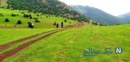 جاهای دیدنی آبشار لاتون مرتفع ترین آبشار ایران