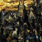غار خفاش دهلران استان ایلام را بشناسیم