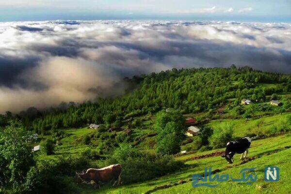 مناطق گردشگری شمال ایران