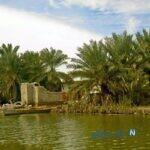 زیباترین جاهای دیدنی شادگان در خوزستان