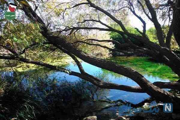 زیباترین جاهای دیدنی کوار در استان فارس