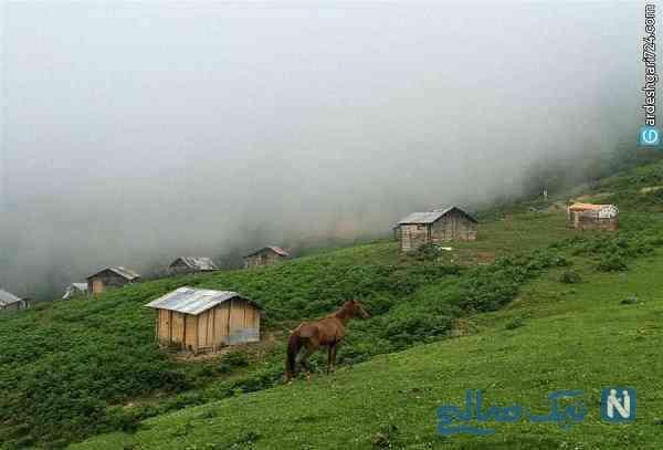 ییلاق اولسبلنگاه زیباترین ییلاق شمال ایران