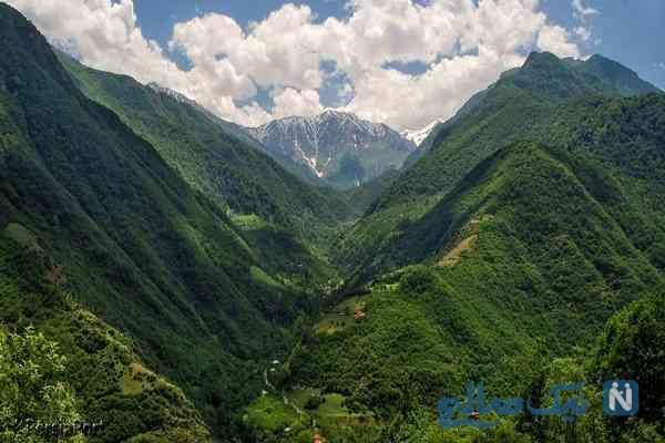 جنگل دو هزار و سه هزار؛جنگل بکر شمال ایران