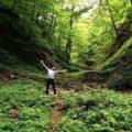 جنگل دالخانی رامسر؛دالان بهشت مازندران