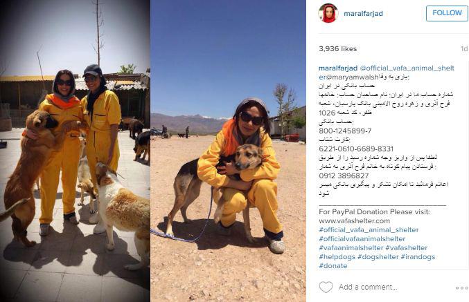 مهربانی مارال فرجاد با حیوانات+تصاویر