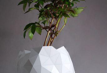 گلدان و گسترش یافتن آن همراه با گل و گیاه داخلش!+تصاویر
