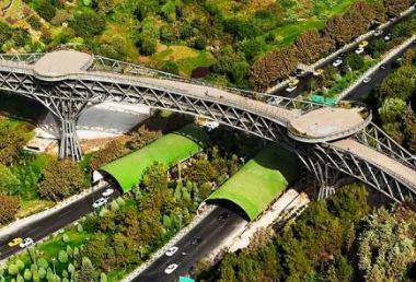 پل طبیعت را در روزهای برفی شهر تهران ببینید!+عکس