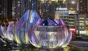 نیلوفر آبی و ساختمانی بی نظیر و دیدنی مانند آن در کشور چین!+تصاویر