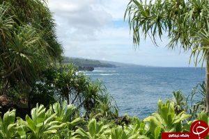 طبیعت هاوایی