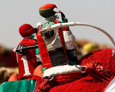 برگزاری مسابقات شترسواری امارات با استفاده از ربات!+تصاویر