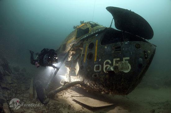مسابقه برترین عکس های زیر آب