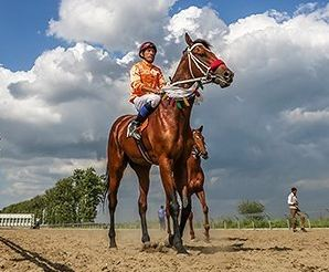 مسابقات اسب دوانی در شهر زیبای گنبد کاووس+تصاویر