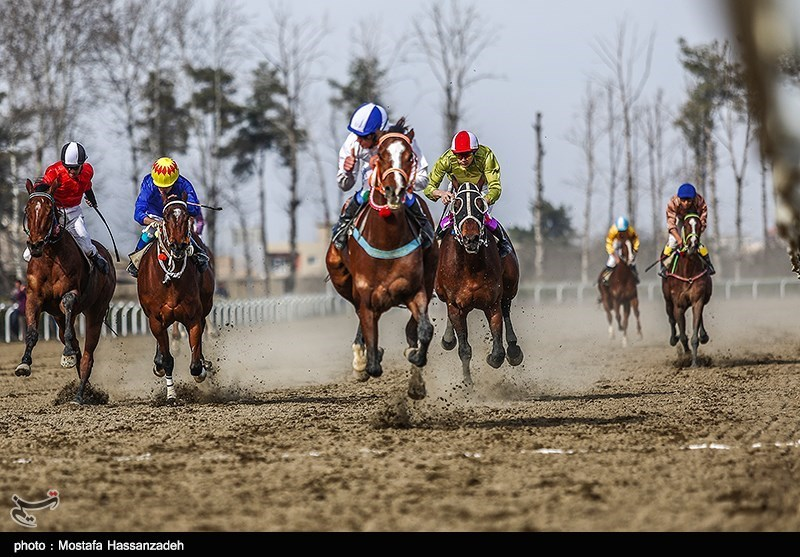 مسابقات اسب دوانی