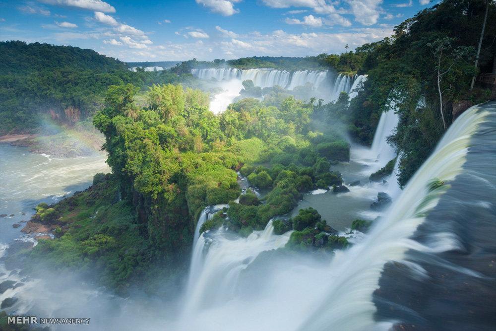 زیباترین جنگل های دنیا