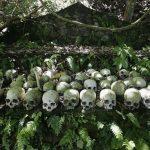 دفن مردگان در جنگل در قفس!+تصاویر