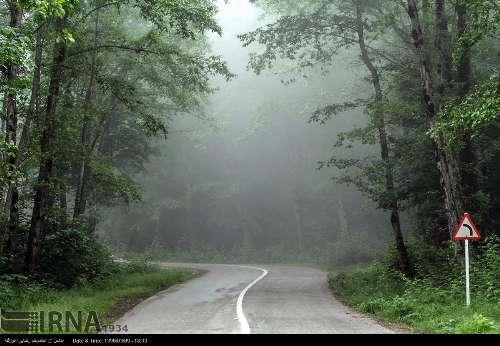 از طبیعت زیبای بهاری استان مازندران لذت ببرید!