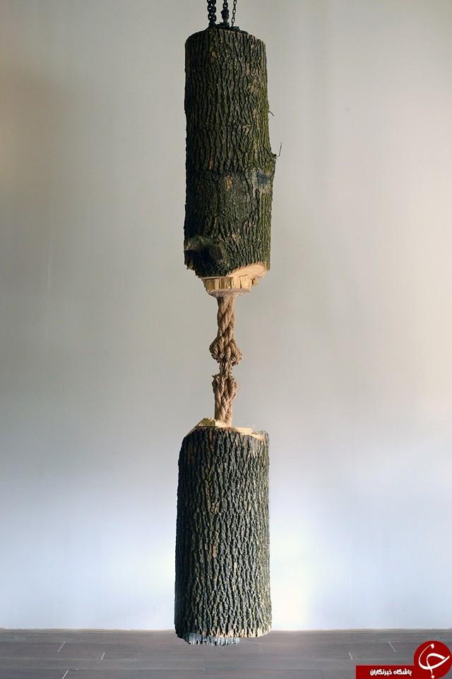 ساختن یک اثر هنری شگفت آور با استفاده از تنه درخت در کانادا!
