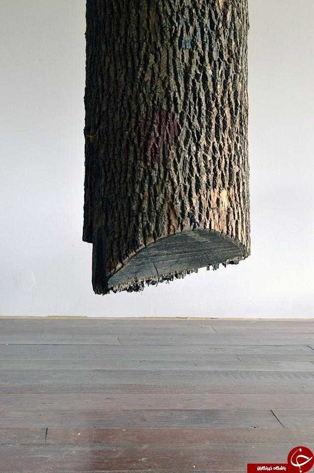 اثر هنری با تنه درخت