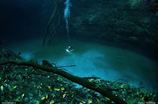 رودخانه زیر آبی که به طرز عجیبی در اقیانوس جریان دارد!
