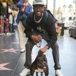 سگ 30 سانتیمتری که بیش از ۷۵ هزار دلار قیمت دارد!