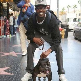 سگ ۳۰ سانتیمتری که بیش از ۷۵ هزار دلار قیمت دارد!