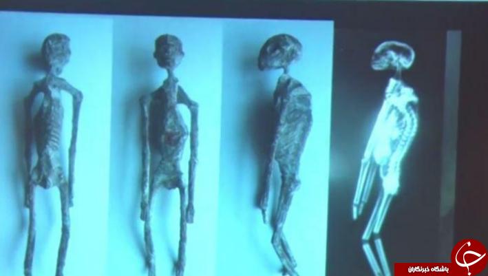 مومیایی شبیه به موجودات فضایی