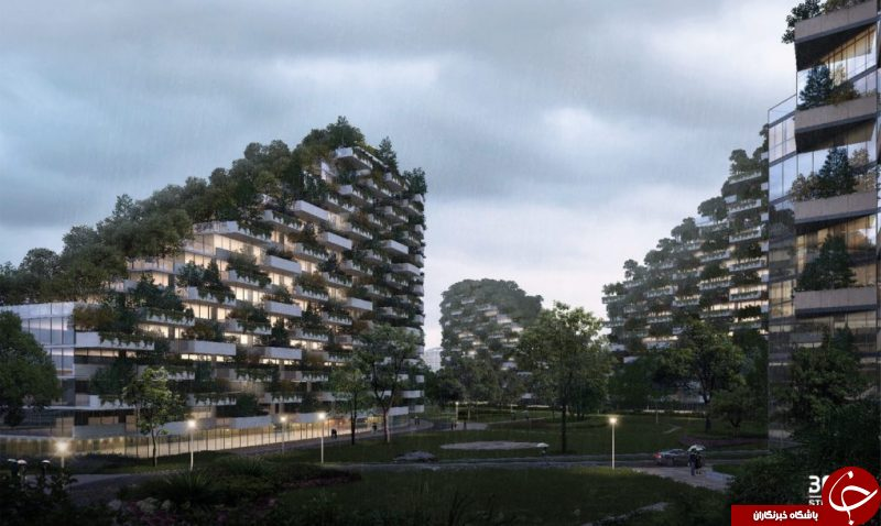 نخستین شهر جنگلی جهان