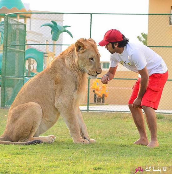 باغ وحش خانگی حمید البقیش