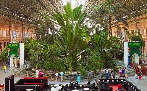 باغ گیاه شناسی در بزرگترین ایستگاه قطار مادرید!