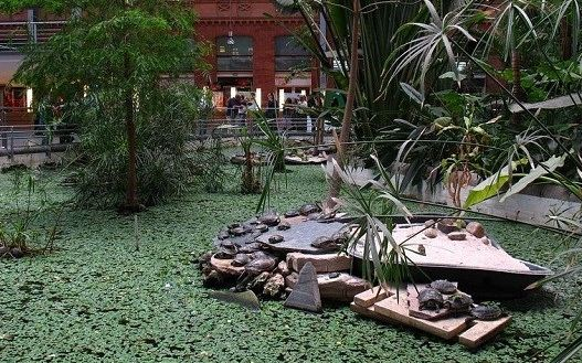 باغ گیاه شناسی در ایستگاه قطار
