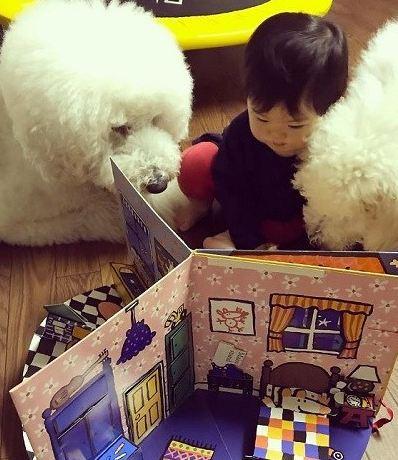 دختربچه ژاپنی
