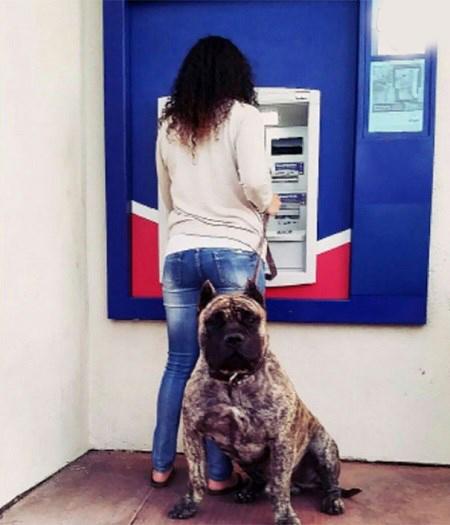 مراقبت از خود هنگام برداشت پول