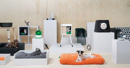 مبلمان برای حیوانات خانگی