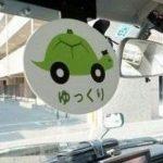 تاکسی های لاک پشتی منحصر به فرد در ژاپن!