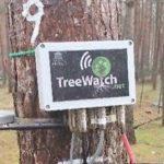 شهری که میتوان با درختان به شبکه اجتماعی توییتر وصل شد!