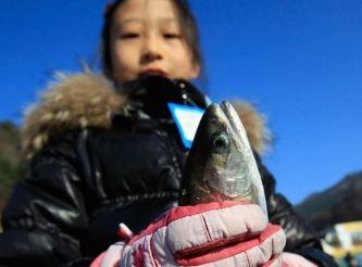 برگزاری جشنواره یخ و ماهیگری در کره جنوبی!