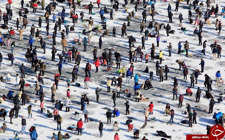 جشنواره یخ کره جنوبی