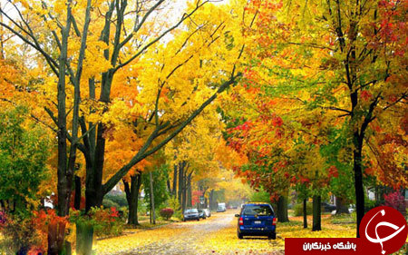 تصاویر پاییزی زیبا