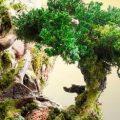 ساختن مجسمه های عجیب با درخت توسط هنرمند خلاق آمریکایی!