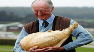 پرورش محصولات عجیب کشاورزی توسط پیرمرد انگلیسی!