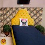 راه اندازی یک هتل عجیب برای حیوانات در هندوستان!