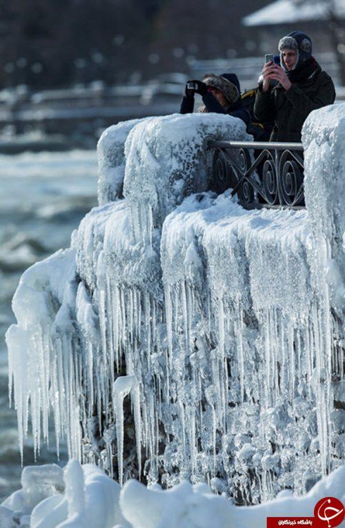 طبیعت در زمستان