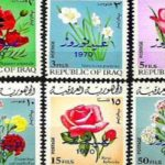 آیا می دانید چرا بعضی از تمبرها نصفه هستند؟!